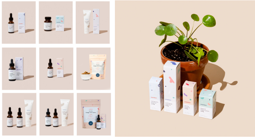 Product Photography MA